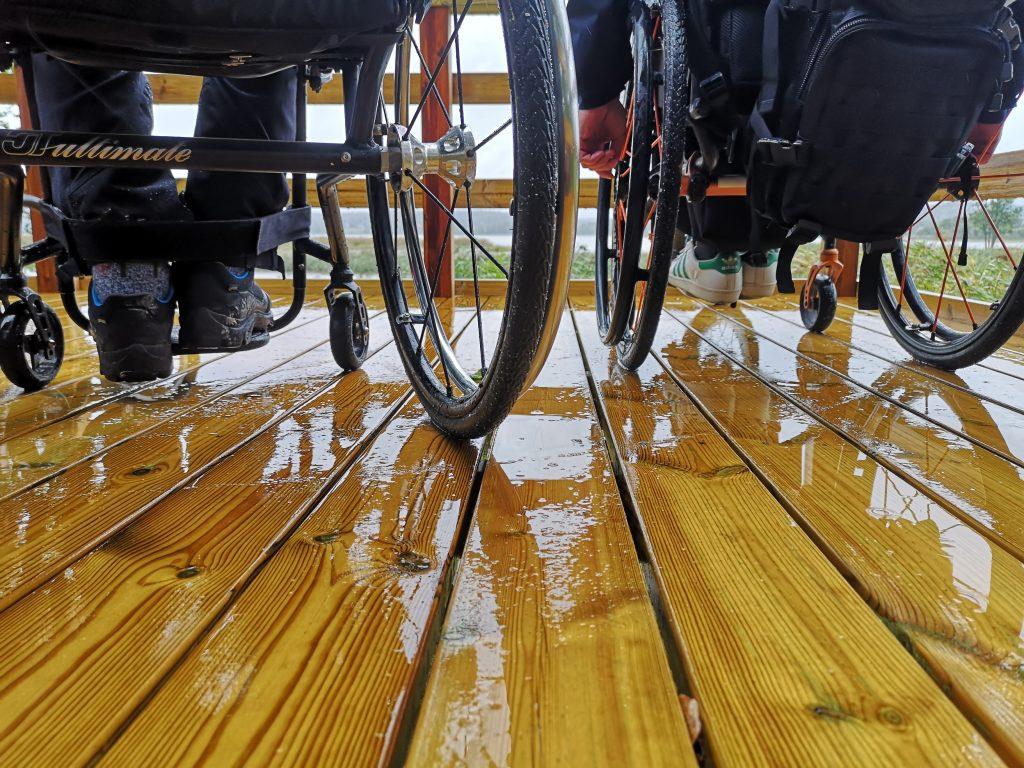 Esteettömällä lintulavalla pyörätuolit