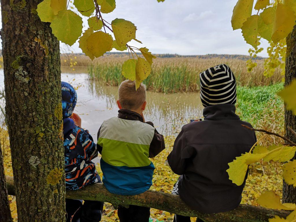 Kolme poikaa syö eväitä esteettömän polun varrella.