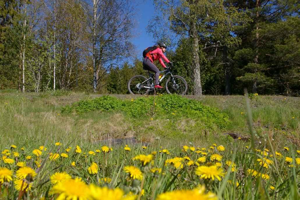 Retkellä pyöräillään Varsinais-Suomen upeiden kulttuurimaisemien keskellä.