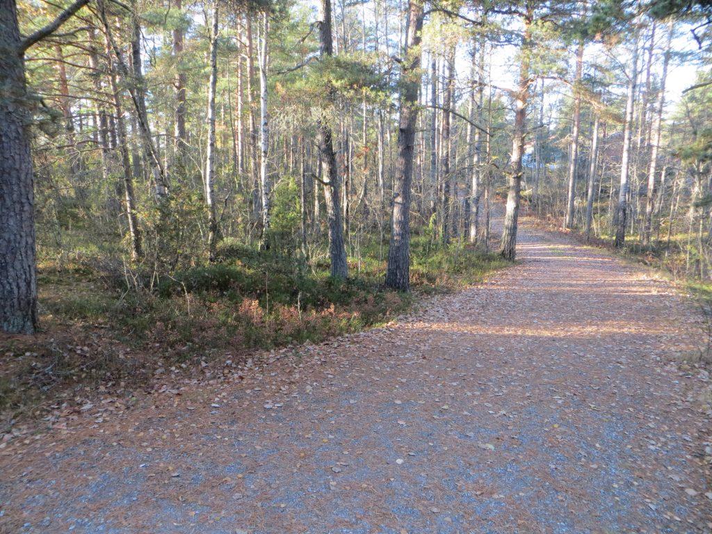 Kärävuoren kuntorata syksyllä kuvattu