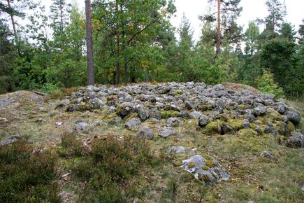Koivumäen muinaispolun hautaröykkiö