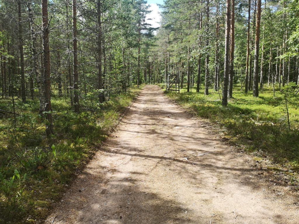 Metsäutotie Lehmijärven retkeilyreitillä