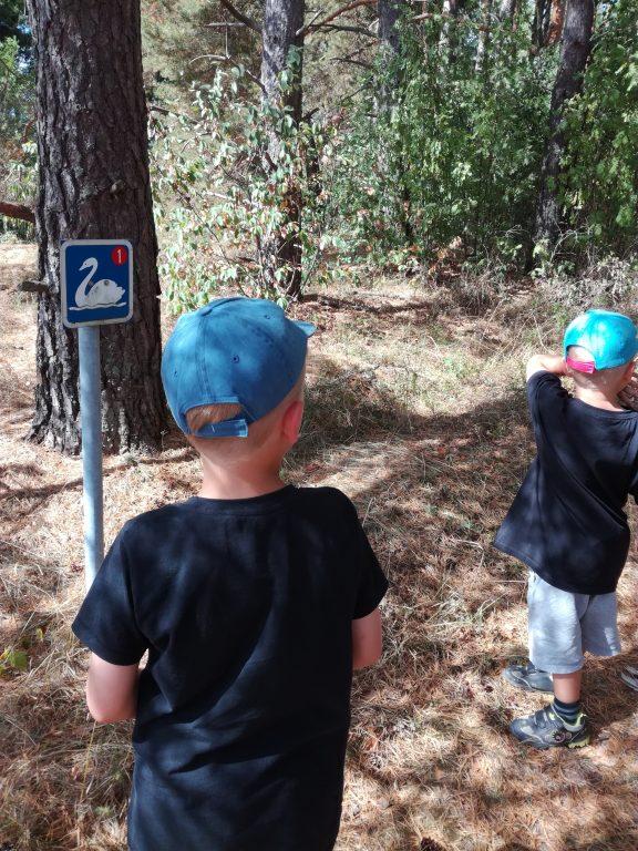 Nakolinnan polulla kaksi poikaa katsoo joutsen-merkkiä