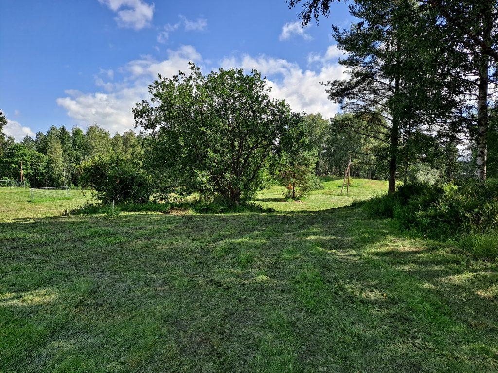 Pahkavuoren frisbeegolfrata, kori näkyy puiden takana puistossa.
