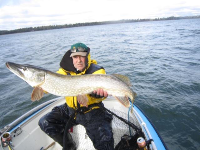 Kalastaja veneessään valtava hauki hyppysissään